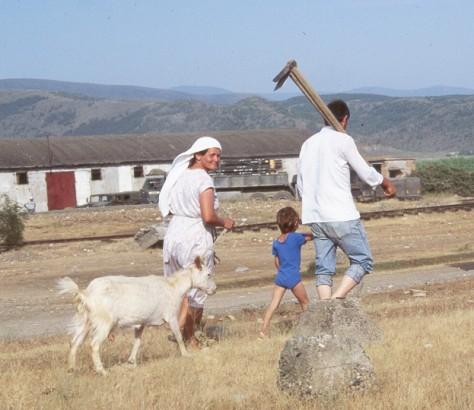 farmers_goat
